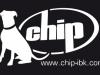 blue_chip